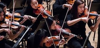 Image result for youth orchestra
