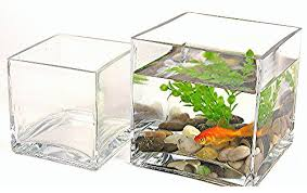 Decorative Fish Bowls Square Glass Fish Bowl Centerpiece Fish Bowl 27
