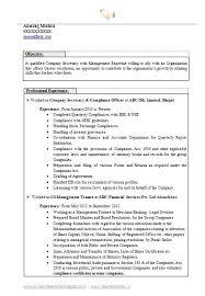 Good Resume Words To Describe Yourself A Good Resume Example Job Objective Resume Examples Examples