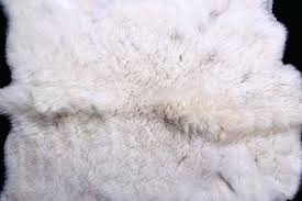 goat hide rug image 2 mountain goat hide rug goat skin rug australia