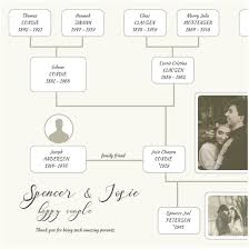 Family Tree Maker Software Professional Templates Heritio