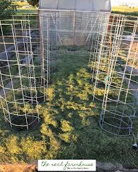 diy beefy tomato cage for only 6 within diy idea 1