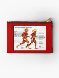 Musculature Anatomy Exercise Chart Print Zipper Pouch By Posterbobs