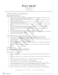 Informatica Administration Sample Resume 22 Format Of Resume Pdf