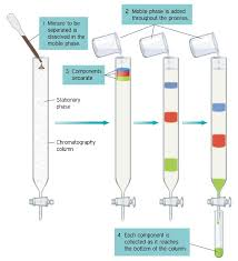 chromatography get the detailed explanation of chromatography at  get chemistry help from expert chemistry tutors online and understand every concepts in depth avail a chemistry tutoring session and also gain