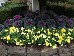 Small Picture Perennial Garden Design Image Rberrylaw How To Plant A