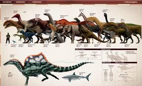 Dinosaur Sizes Comparison Chart A Dinosaur Size Comparison Naturewasmetal