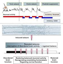 Ect Voltage Chart Scientific And Experimental Bases Of Electroconvulsive