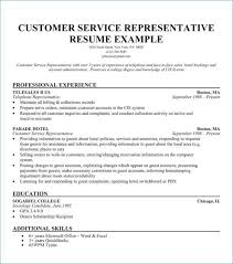 Customer Service Resume Examples Lovely 30 New Customer Service