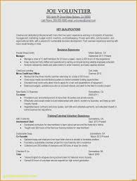 Effective Resumes Tips Adorable Tips For A Successful Resume Newest How Do You Write A Good Resume