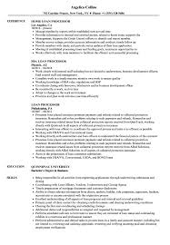 Loan Processor Resume Samples Velvet Jobs