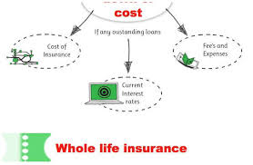 Whole Life Quote Calculator Magnificent Anonymous Whole Life Insurance Quote Friendsforphelps