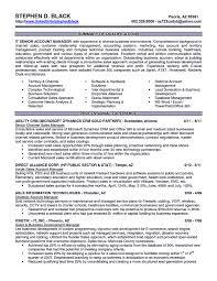 resume for account manager executive resume format account executive resume is like your weapon