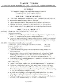 ... Resume Summary Examples 16 New Career For Professional ...