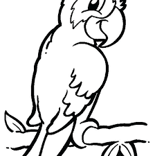 cool animal coloring pages cool color pictures of animals ideas resume ideas free colouring pictures wild