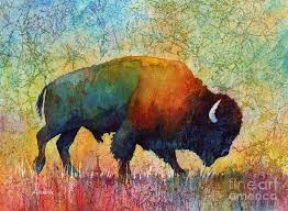 Image result for american buffalo art