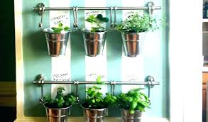 kitchen herb wall garden indoor gard