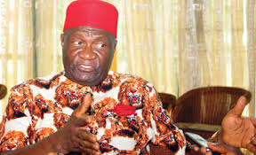 Image result for chief nnia nwodo pictures