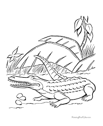 Small Picture Dinosaur coloring sheets Crocodile