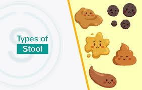 Bristol Stool Chart Type 6 Smiles Piles Fissure