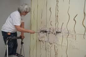 drywall repair livonia mi remove