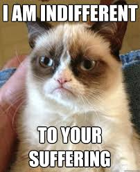 i am indifferent to your suffering - Grumpy Cat - quickmeme via Relatably.com