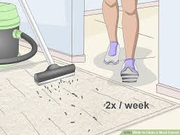 image titled clean a wool carpet step 2