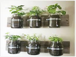 Kitchen Herb Gardens Gardens Herb Garden Ideas Kitchen Herb Gardens And Salad Walls My