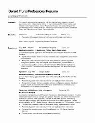 Management Resume Summary Elegant 51 Luxury Resume Summary Example