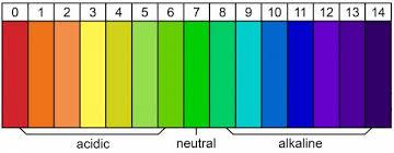 Alkaline Ph Chart Alkaline Diet For An Athletic Edge Breaking Muscle