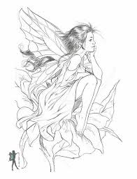 Small Picture The 25 best Fairy coloring pages ideas on Pinterest Colouring