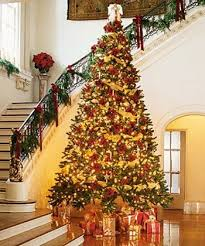 A Christmas Tree Nightmare additionally Christmas Tree Decorating Ideas   Southern Living as well 512 best Oh Christmas Tree images on Pinterest   Xmas trees moreover big christmas tree in house   Rainforest Islands Ferry in addition Stories from the Big House  2011 12 moreover  furthermore 25  unique Gold christmas tree ideas on Pinterest   Gold christmas furthermore Red And Gold Christmas Tree Living Room Marvelous Golden Ornaments besides big christmas tree in house   Rainforest Islands Ferry also Christmas in a California Home with a Neutral Palette together with Couple's Christmas tree bought in 1978 now so big they need a. on christmas tree for big houses