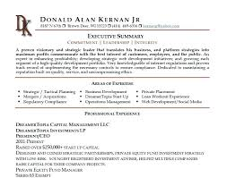 Sample Executive Summary Resume Example Shalomhouse Us Modern