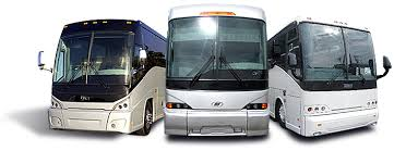 Image result for Coach for rent