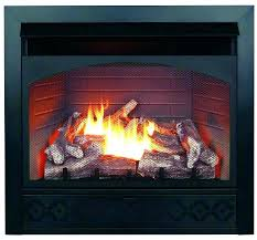 gas fireplace compare s on in natural heater reviews parts procom remote control