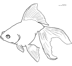 Small Picture Goldfish Coloring Page