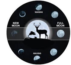 Hunting And Fishing Solunar Charts Moon Phases Impact On Hunting And Fishing Acurite