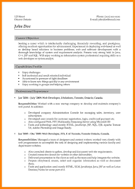 Java Web Developer Resume Sample Sample Resume Objectives For Web Developer Inspirationa Web 48