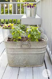 vintage galvanized wash tub herb garden