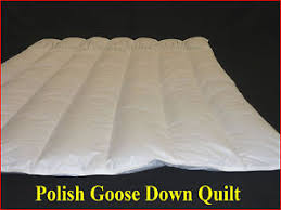 KING SIZE POLISH GOOSE DOWN QUILT 70% GOOSE DOWN 30% GOOSE ... & Image is loading KING-SIZE-POLISH-GOOSE-DOWN-QUILT-70-GOOSE- Adamdwight.com