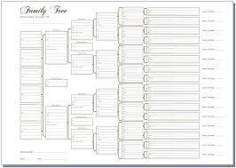 A3 Six Generation Family Tree Chart Pedigree Pack Of 3 Rolled In