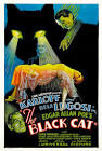 Charles Lamont Bear Cats Movie