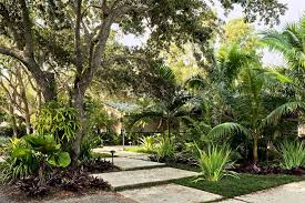 Small Picture Tropical Garden Ideas Garden Design Ideas