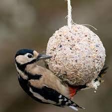 Giant Fat Ball on a Rope - Original | CJ Wildlife