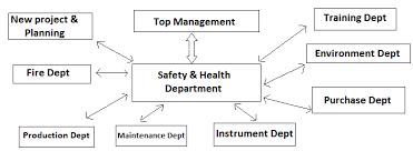 Safety Organisation Chart Rls Human Care