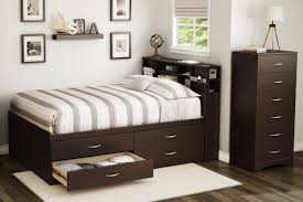 Queen Bed with Pull Out Bed Underneath | Twin Bed with Dresser Underneath |  Queen Size