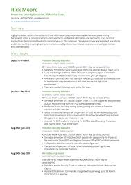 Resume Examples For Military Gorgeous Military CV Examples And Template