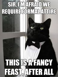 Formal Cat memes | quickmeme via Relatably.com