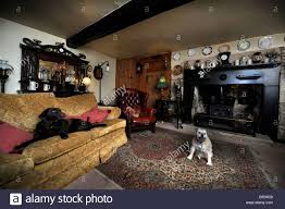 Living Room Interior Design Uk Traditional British Living Room Interior Design Stock Photo