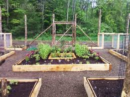 Small Picture Raised Vegetable Garden Plans For Zone 5 Rberrylaw Raised